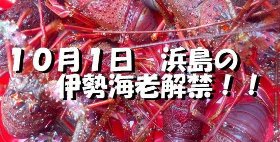 10月1日 浜島の伊勢海老漁解禁!!